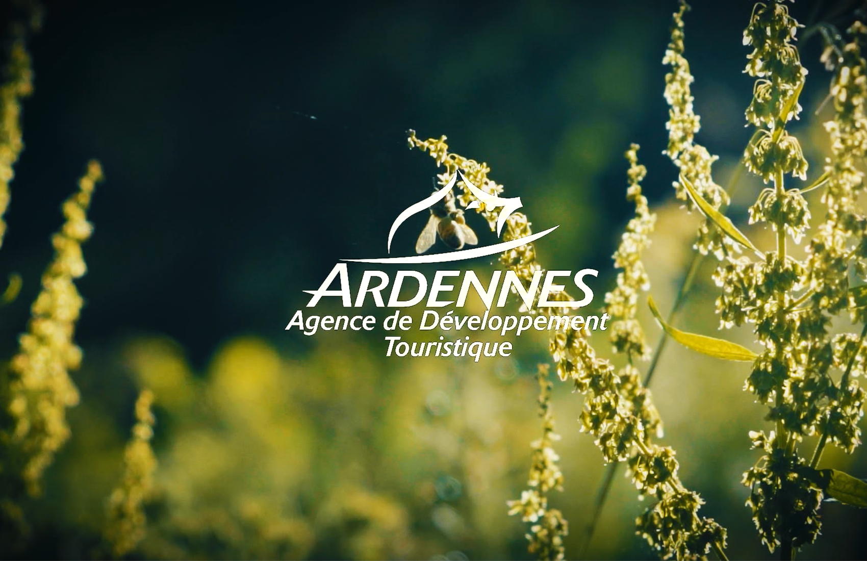 Ardennes / Tourisme